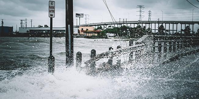 Natural Disaster CROP